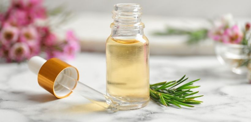 Tea tree oil is a natural head lice deterrent